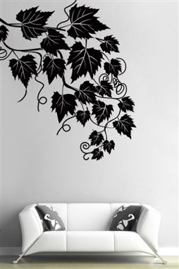 Wall Decals  Ivy