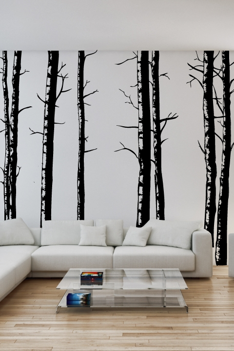 Birch Trees -Wall Decal & Wall Decals Birch Trees- WALLTAT.com Art Without Boundaries