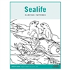 Sealife Pattern Pack - Irish