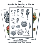 PyroPacket #3 Seashells, feathers, & plants.