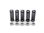 Brock's Performance Clutch Spring Kit With .280 Thick Spacer ZX-14 (06-11)