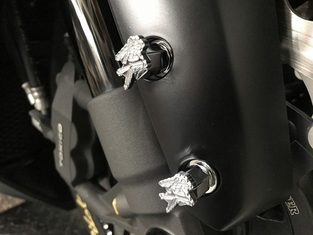 FENDER BOLTS  CUSTOM POLISHED STAINLESS
