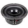 P Audio SN8-250CX Co-Ax Speaker