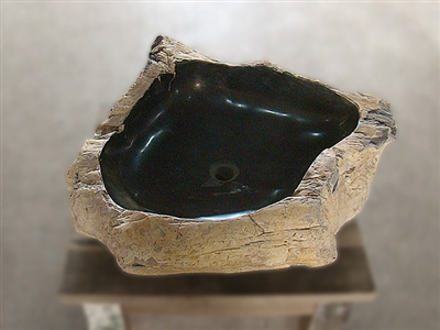 Petrified Wood Vanity Bowl/Sink #018
