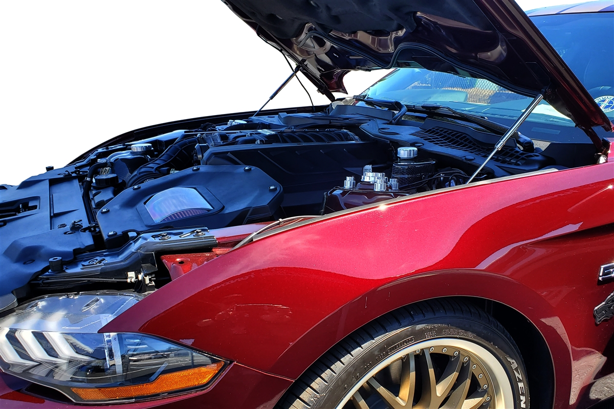 Ford Mustang Hood