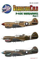 Barracuda BC-32007 - P-40K Warhawks, Part 1