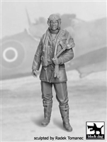 Black Dog F32028 - RAF Fighter Pilot No. 1, 1940-1945