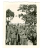 German Soldiers with French Prisoners of War, Bearded French Soldier, France 1940, Original WW2 Photo