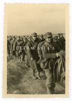 Column of Polish Prisoners of War, Poland 1939, Original WW2 Photo