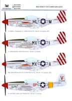 RB-Productions RB-D48025 - Red Nose P-51D-5 Mustang Aces