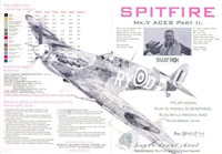 Tally Ho 48018 - Spitfire Mk. V Aces, Part II