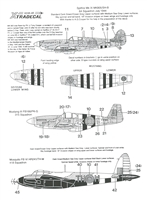 Xtradecal X48038 - Normandy Invasion Aircraft