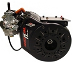 Engine, Briggs Animal, M series (QMA/USAC/Quarter Midgets)