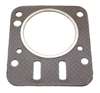 Gasket, Head, World Formula & Animal M Series