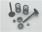 Valve & Spring Package, Stock Appearing Big Valve - 6.5 Chinese OHV- 212 Predator