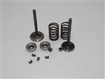 Valve, Set, 420 Hemi Predator, 38/34mm