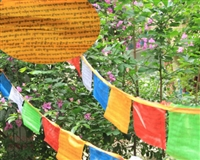 16 Foot Medicine Buddha Prayer Flag