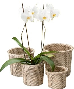 Set of 4 Nesting Flower Baskets with Round Rimmed - White Wash 9x8'H/8x7'H/7x6'H/6x5'H