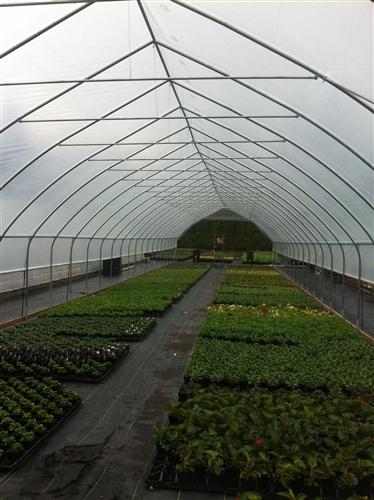 Hex Greenhouse