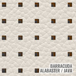 Barracuda Alabaster / Java