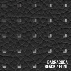 Barracuda Flint