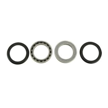 Campagnolo USB 11spd Record Bearings/Seals
