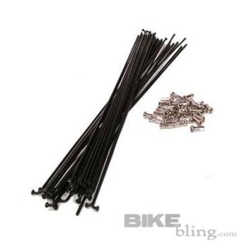 DT Champion Spokes - Black