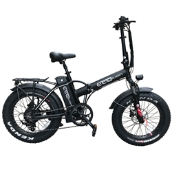 EcoMotion Mini Pro+ e-Fat Bike