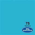 Savage Widetone Seamless Background Paper (#75 True Blue, 53in x 36ft)