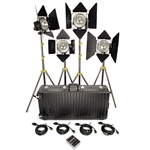 DP4 1000W TUNGSTEN LIGHT KIT LOWELL