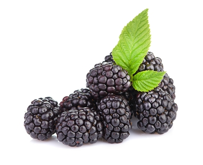 One Stop Flavors - Blackberry - 16 oz
