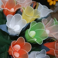 Alessia Tulip Flower Favor