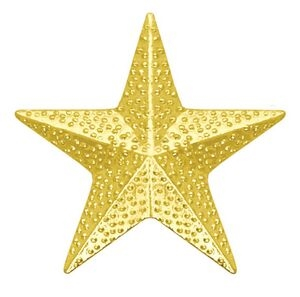 Chenille Pin<BR> Star