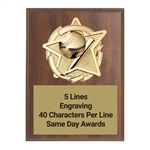 Gold Star<BR> Baseball Plaque<BR> 3 Sizes