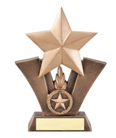 Victory Star Trophy<BR> 6 to 7.5 Inches
