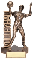 Billboard<BR> Male Volleyball Trophy<BR> 6.5 & 8.5 Inches