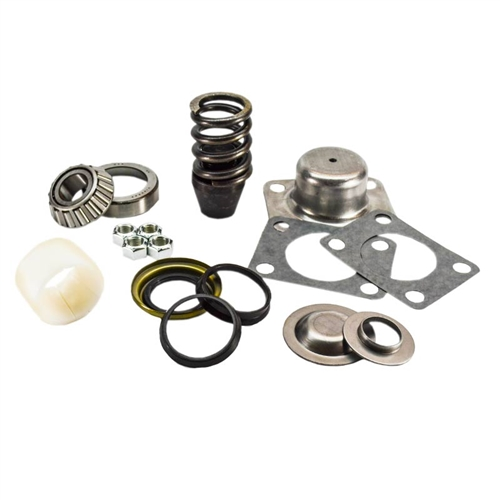 D60 King Pin Kit 1 Side - Pin, Bushing, Seal, Bearing, Spring, Cap