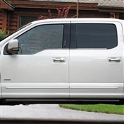 Ford F150 Painted Side Molding Reduce Door Dings