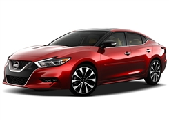 Nissan Maxima Painted Side Molding Reduce Door Dings