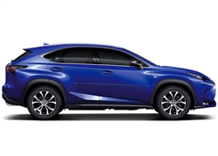 Lexus NX Painted Side Molding Reduce Door Dings