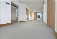 Vinyl Flooring, Altro Walkway 20, safety flooring free shipping next day delivery to your door from Vinyl Flooring Online.