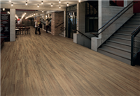 Vinyl Flooring, Bevel Line Wood Collection, authentic wood effect flooring available next day to your door with free shipping from Vinyl Flooring Online.