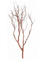 "Chaparral Manzanita Branch, 18"" Tall"