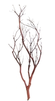 "Chaparral Manzanita Branch, 24"" Tall"