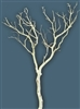 "Sandblasted Manzanita Branches, 48"" tall"