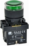 RCP2-BW336-110...ILLUMINATED PLASTIC FLUSH PUSH BUTTON ACTUATOR,110VAC, WITH BA9 FILAMENT BULB , GREEN COLOR