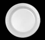 Laminated Foam Plastic Dinnerware Plate White - 9 in.