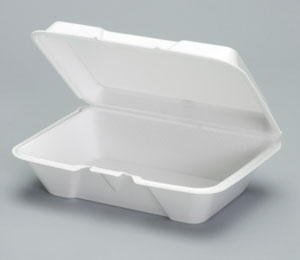 1-Compartment Container Hinged Foam Large - 9.18 in. x 6.5 in. x 3.06 in.