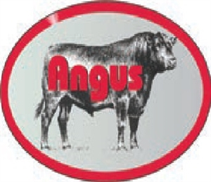 Angus Beef Continued Label - 1.25 in. x 2 in.