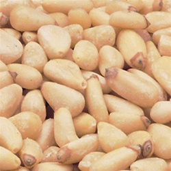 Azar Shelled Select Bakers Pignolias 5 Pound